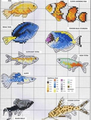 Схемы золотых рыбок в картине